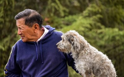 How to Care for Older Dogs: The Top Tips to Remember
