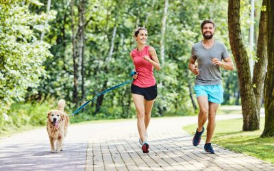How to Run With Your Dog the Correct Way