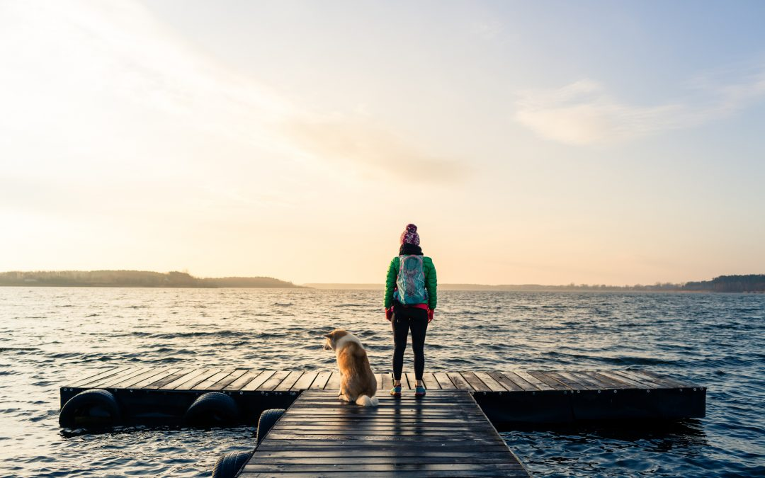10 Things That Owning a Dog Will Teach You (That You Can't Learn Any Other Way!)